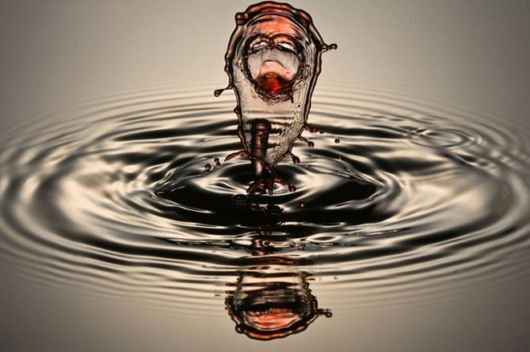 Water Drops Photography By Corrie White