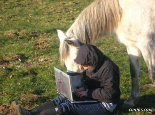 Notebooks are Used Everywhere