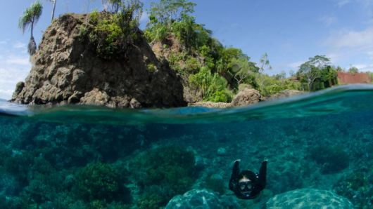 Indonesia's Exotic Spice Islands