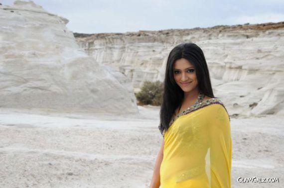 Mamta Mohandas Looks Beautiful in Saree