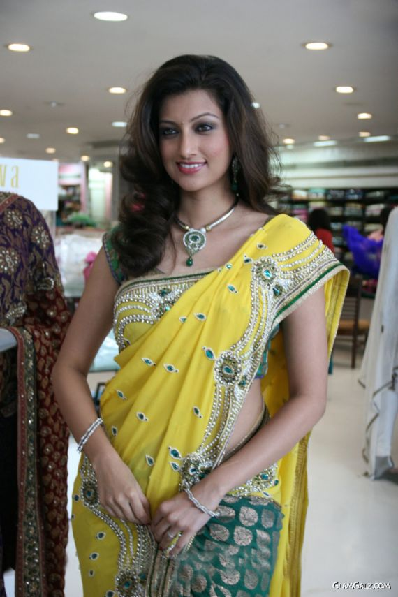 Gorgeous Hamsa Nandini In Saree